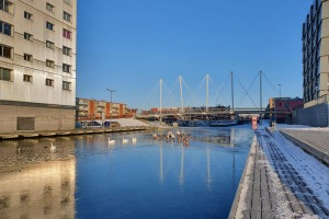 20210211_winter-brug-vanzuuk.jpg