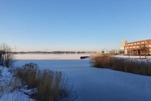 20210211_winter-vanaf-hospitaalbrug